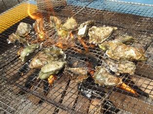 花房里的牡蛎烧烤2