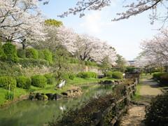 旭ヶ冈公园
