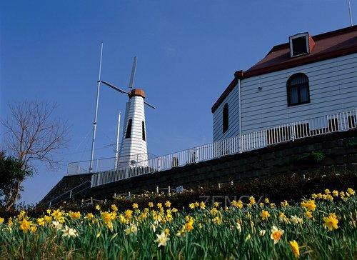 风之见丘陵公园——看得见风的地方