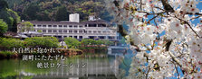 New Heart Pia宾馆——湖畔的温馨住宿