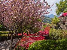 十可苑——锅岛家后花园