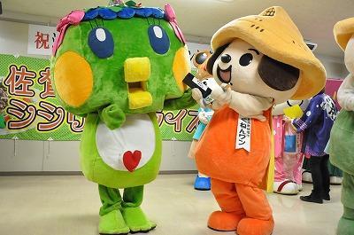 佐贺市吉祥物西西里·安娜酱生日