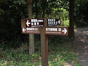 New Spot @ 吉野里历史公园(2)